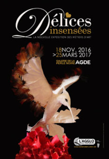 « Délices insensées » exposition à Agde du 18 novembre 2016 au 25 mars 2017