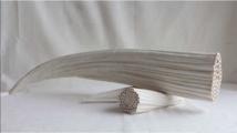 Bénédicte Vallet. Corne des marais, animal femelle