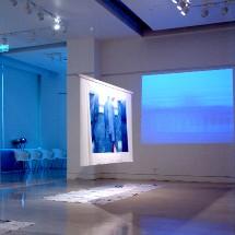 Jusqu'au 1 er février > Biennale 'Lyon et les villes d'art et de soie': Regards sur le Japon - 2ème édition