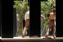 19 au 21/03 <> Umwelt - Maguy Marin. Œuvre sans concession. Au Toboggan à Décines (69)