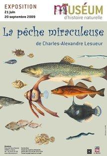 21 juin – 20 septembre, La pêche miraculeuse de Charles–Alexandre Lesueur, Museum d'histoire naturelle du Havre