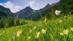29 septembre. Le 1er Baromètre Nature dans les Pays de Savoie à Chambéry