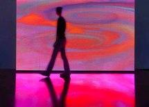 4 décembre au 13 février, Power Pixels 2009 de Miguel Chevalier, à la Galerie Georges Verney-Carron, à Lyon