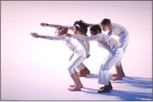 11 janvier, « Ulysse». Groupe Grenade – Josette Baïz. Chorégraphie Jean-Claude Gallotta / Adaptation chorégraphique Josette Baïz, à la Comédie de Valence