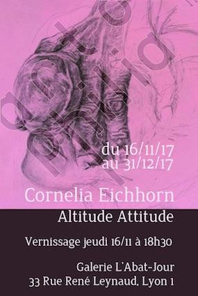 Altitude Attitude - Exposition de dessins de Cornelia Eichhorn, à la galerie L'abat-jour, Lyon, du 16/11 au 13/12/17