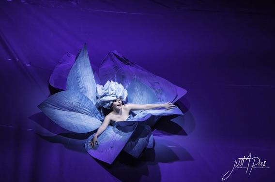 Paysages Intérieurs de Philippe Genty du 17 au 21 janvier au théâtre le 13e art, Paris
