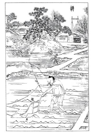 Planche d'encyclopédie, détail
