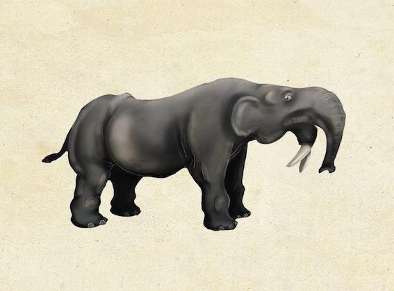 Mastodonte. © Palais de l'Univers et des Sciences de Dunkerque