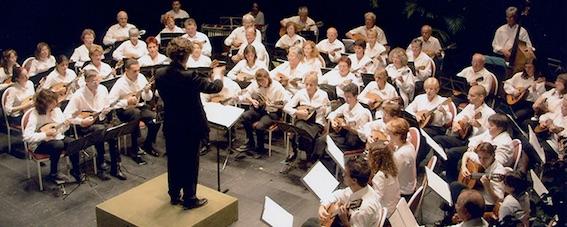 Orchestre à plectres régional  Auvergne Rhône-Alpes, 5  mai 2018, 20 h 30, Collégiale de Tournon, Ardèche