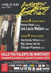 8 et 9.10.10 : 13ème édition d'Avignon Blues Festival