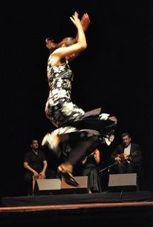 19 + 20.11.10 : Week end Flamenco et danse Afro au Théâtre du Rempart, Avignon