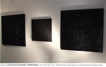 10 > 12.12.10 : Philippe Chitarrini, Exposition Supervues 2010 à l'hôtel Burrhus, Vaison-la-Romaine