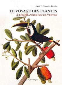 Rayol Canadel sur mer, Domaine du Rayol : exposition « Le voyage des plantes & les Grandes Découvertes » du 18 octobre au 25 novembre 2018