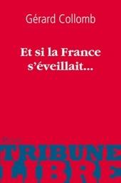 « Et si la France s'éveillait… » sur internet ! Parution du livre de Gérard Collomb