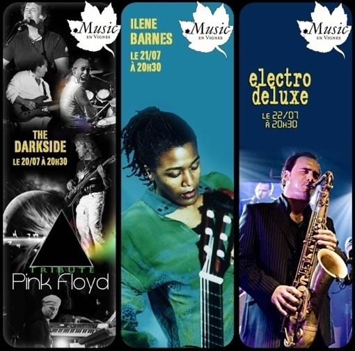 Festival Music en Vignes Edition 2011, Château Paradis, Le Puy Sainte Réparade (13), 20 au 22 juillet 2011