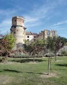 Chateau de l'Arthaudiere © DR