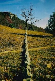 Philippe Chitarrini : Vision figée dans le Parc naturel des Gorges de l'Ardèche