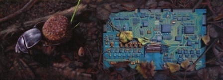 ACT 14 - dung beetle on microcity - morocco/hungary, 2011. Huile sur toile. 20 x 55 cm. Courtesy Gal. Frank Elbaz