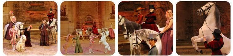 Ecuyères, nouveau spectacle équestre du Musée Vivant du Cheval, dôme des Grandes Ecuries du Domaine de Chantilly, du 1er avril au 4 novembre 2012