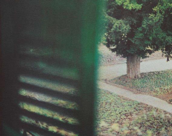 Jardin-vu-de-la-chambre-de-Claude-Monet,-Giverny,-hiver-2010-©-Bernard-Plossu