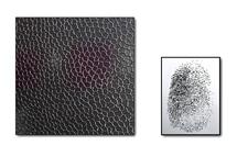 Philippe Chitarrini : Fingerprint's Obsession #1, Maison de la Corse, Marseille, du 4 mai au 30 juin 2012