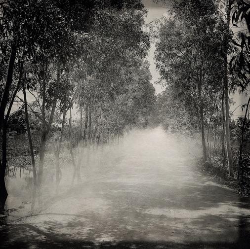 L'Odeur de la nuit était celle du jasmin, 2018 © Flore