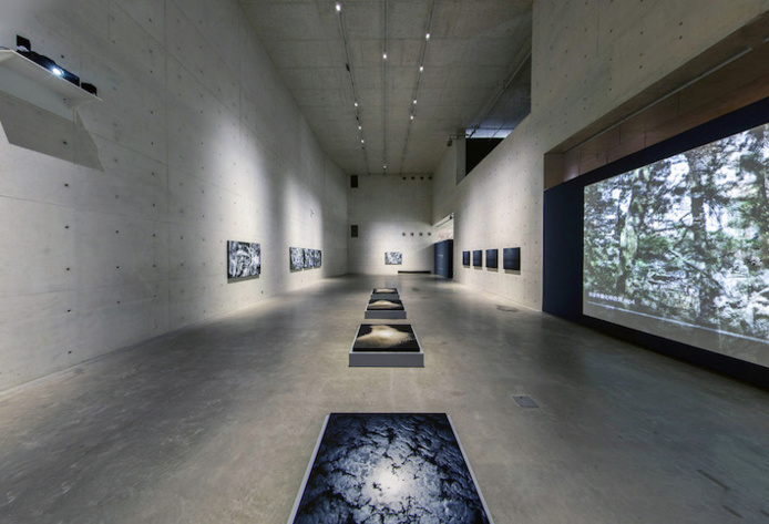 Exposition Xie Zilong Art Museum, Chine 2019 © Eric Bourret