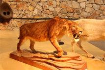Le tigre à dents de sabre accueille le visiteur © P.A.