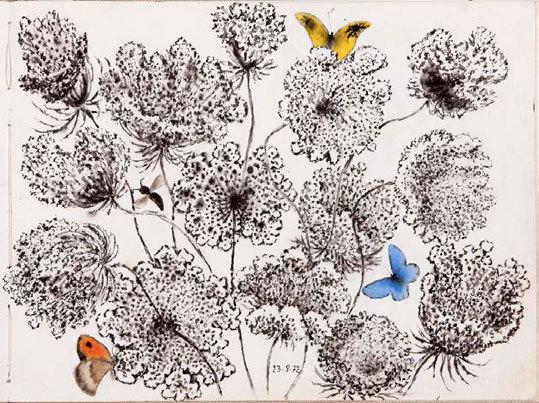 Dom Robert « Ombelles et papillons », Abbaye-école de Sorèze (81) du 9 novembre au 9 décembre 2012