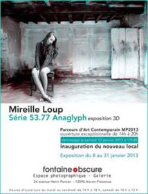 Marseille-Provence 2013. Mireille Loup [ 53.77 anaglyph / Mem ]. Espace Photographique Fontaine obscure. Parcours d'art contemporain à Aix-en-Provence, du 8 au 31 janvier 2013