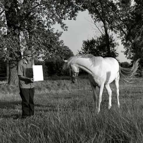 Bruno Jakob, Untitled (Horse), 2003. Photographie : Peter Puntener.