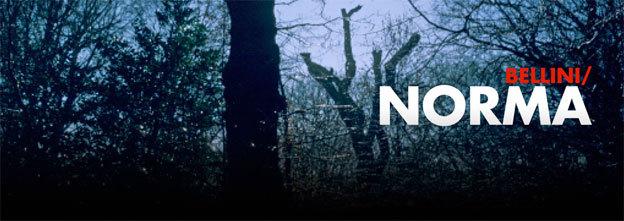 Norma, Vincenzo Bellini.  Version concert. Du 10 au 12 Novembre 2013 à l'opéra de Lyon
