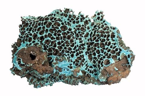 Carbo-Rosasite-Ojuela-Mapimi-Mexique, collection de minéraux de Sorbonne Université, Alain JEANNE-MICHAUD
