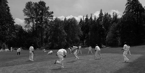 Cricket Pitch, 1951, 2010