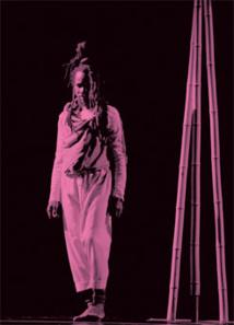 Une Flûte enchantée, d'après Mozart, Théâtre de la Joliette, Marseille, du 28 Septembre au 5 Octobre 2013