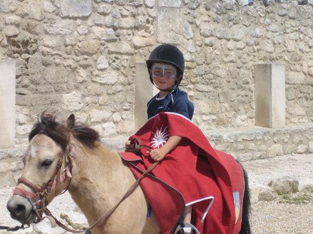 Petit chevalier ©DR