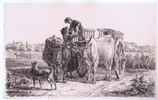 Antoine Duclaux, Boeufs attelés.  Château de Champollon Crayon graphite, plume et encre noire sur calque et eau-forte. Coll. part.