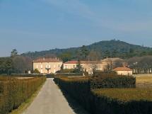 Uchaux – Vaucluse - Château Saint-Estève, une saga familiale