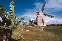 Marie-Galante Moulin canne à sucre