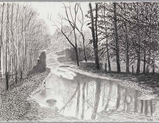 David Hockney, Woldgate, 6-7 février de la série L'Arrivée du printemps en 2013 (deux mille treize) © Richard Schmidt