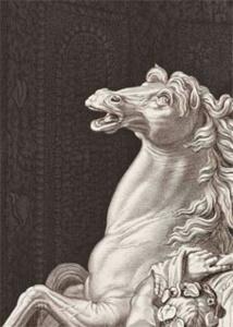 Images du Grand Siècle. L'estampe française au temps de Louis XIV (1660 - 1715), BNF François Mitterand, Paris, du 3 novembre 2015 au 31 janvier 2016