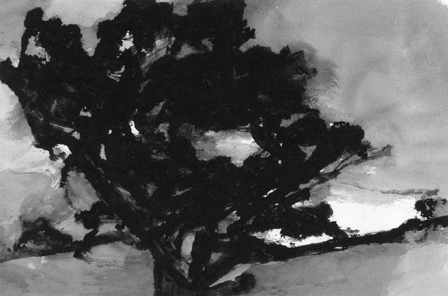 Alexandre Hollan, Le Grand Chêne de Viols-le-Fort,2010 Lavis, gouache 65 x 100 cm © Photo Illès Sarkantyu