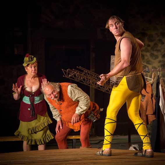"""La Nuit des Rois de William Shakespeare, par Théâtre """"Le Fenouillet"""", Nyons, le 18 mars 2016"""