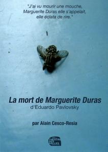 Avignon Off, théâtre des Halles : La mort de Marguerite Duras, de Eduardo Pavlovsky par Théâtre des Halles – Compagnie A. Timar