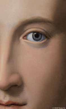Alessandro Allori, Portrait de jeune homme (détail)