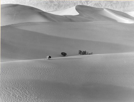 Kishin Shinoyama (né en 1940), Sans titre, de la série Death Valley, 1969, don de l'artiste, 1975