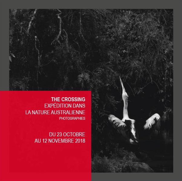 Paris, Le Cloître ouvert : The Crossing (La Traversée), exposition de photographies de Katrin Koenning du 23 octobre au 12 novemre 2018