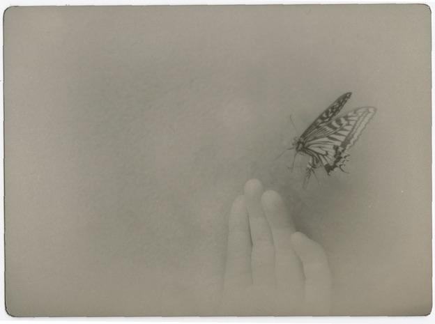 "Issue de la série ""the red fish"" © Miho Kajioka, Courtesy Polka Galerie"