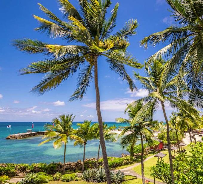 Jardin et plage de la Céole Beach © DR