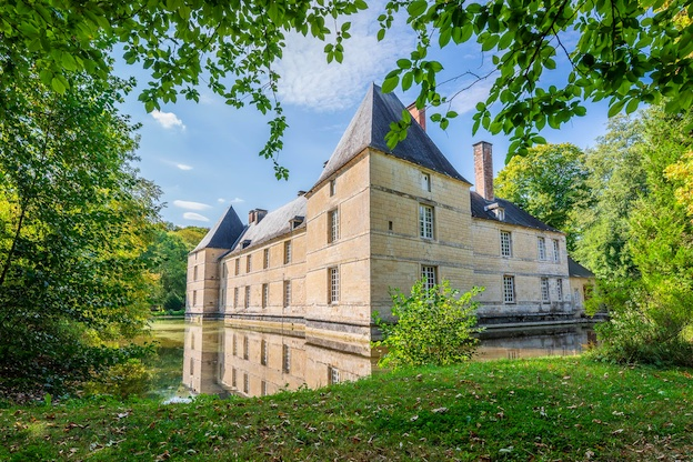 Château de Vaudremont © DR